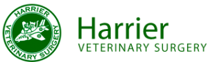 Harrier Veterinary Surgery